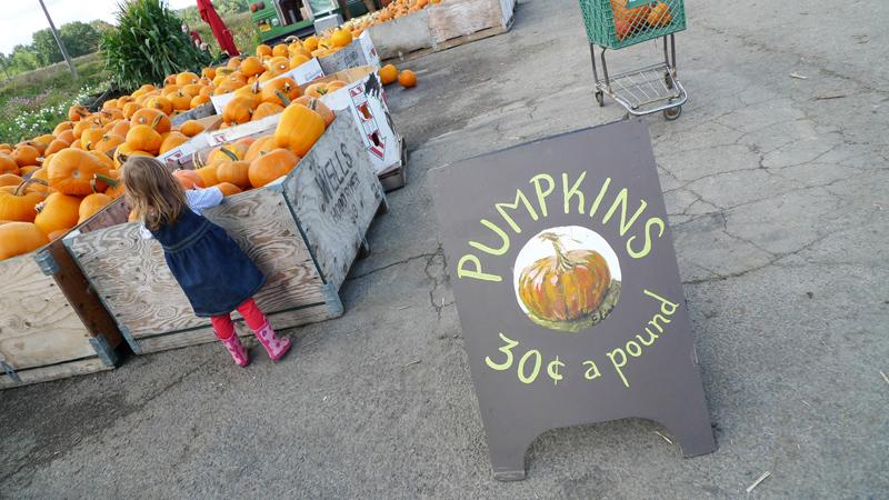 Pumpkin2011_3