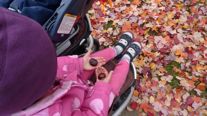 Fall2011_6
